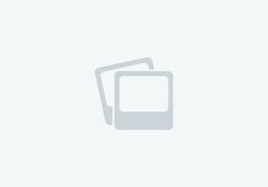 Kral Devil walnut .22  Air Rifles