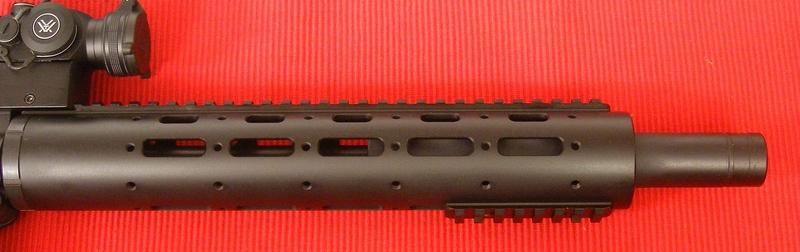 Smith & Wesson Custom M&P 1522 Custom Semi-Auto .22  Rifles