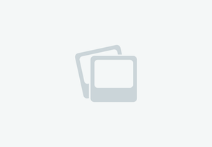 Daystate Pulsar .22  Air Rifles